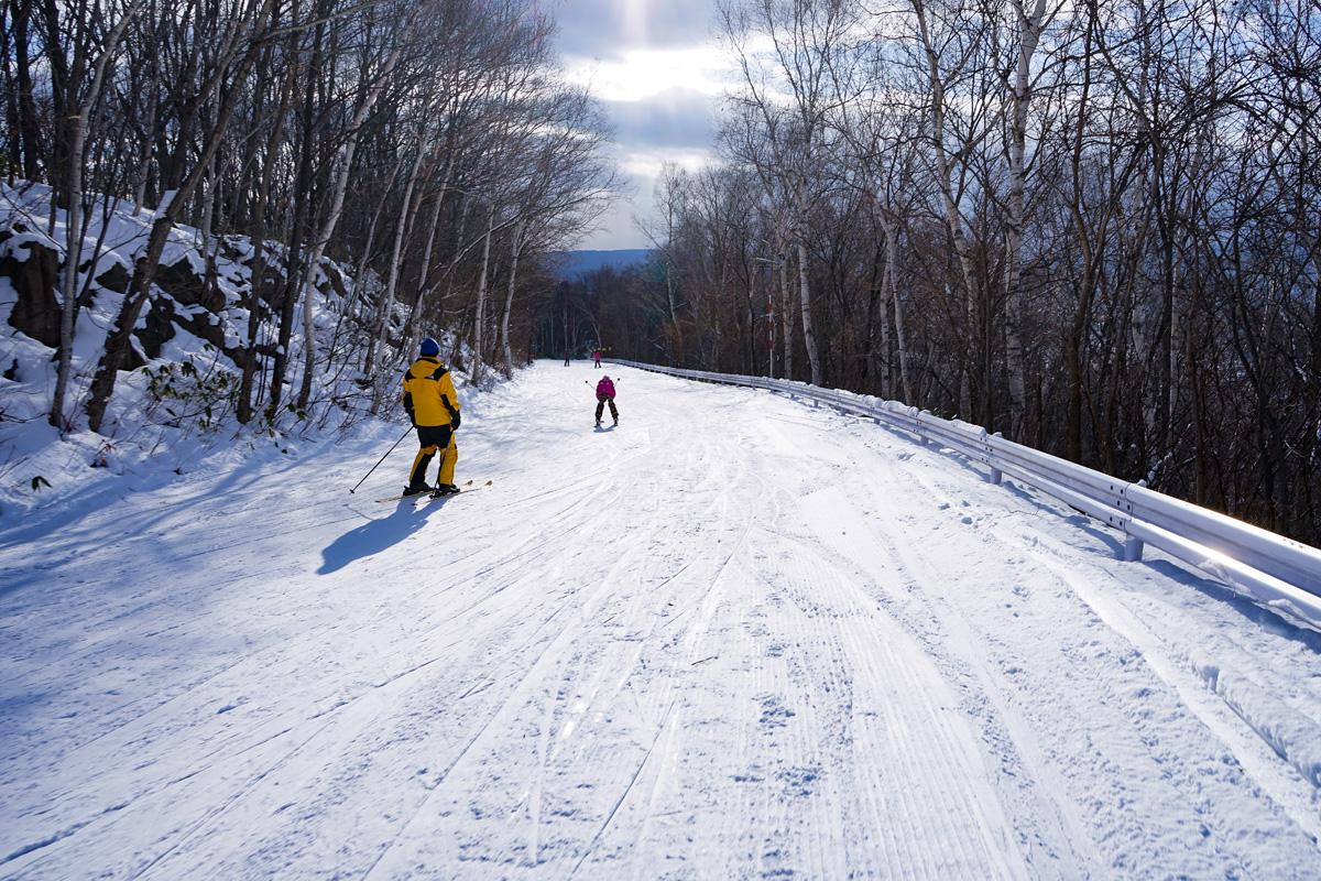 藻 岩山 スキー 場 札幌藻岩山スキー場 ‐ スキー場情報サイト
