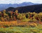 05.高原温泉の紅葉(バック・石狩山系)